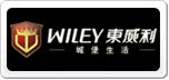 WILEY东威利